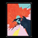 "iPad Pro 12.9"" (3rd Gen)"